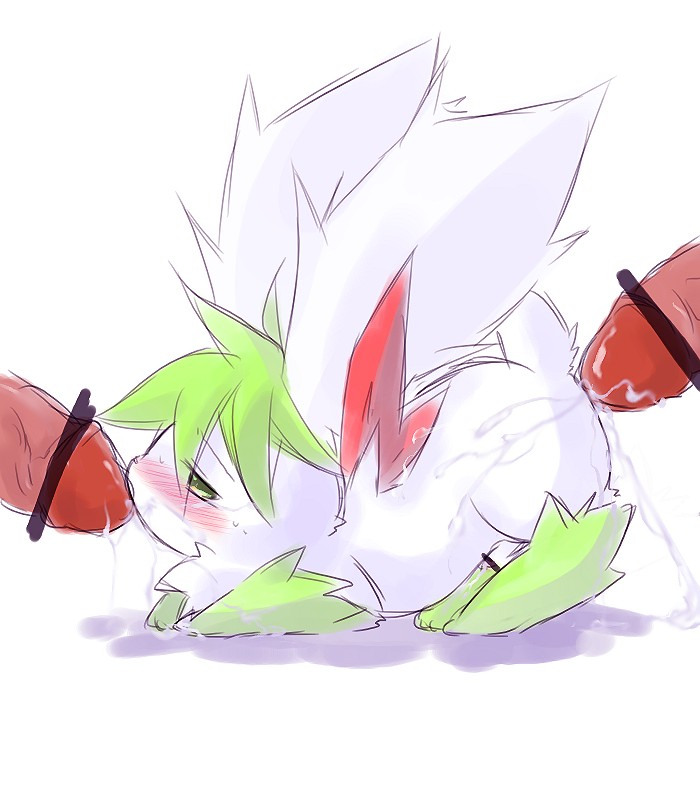 shaymin get how form to sky Lethe fire emblem path of radiance